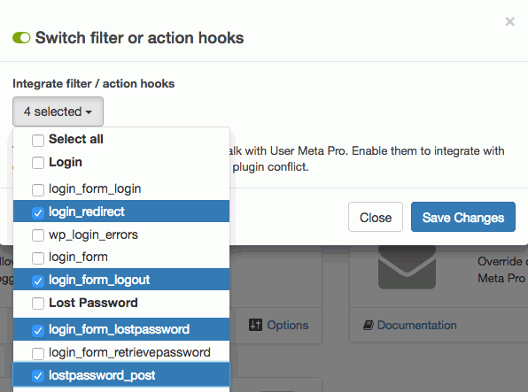 img-02: switch filter or action hooks options